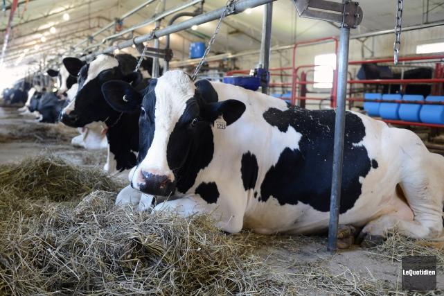 Les producteurs de lait du Saguenay-Lac-Saint-Jean attendent de... (Archives Le Quotidien)