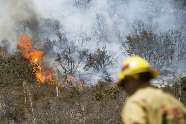 Un pompier devant l'incendie de Blue Cut, qui... (AP, Noah Berger)