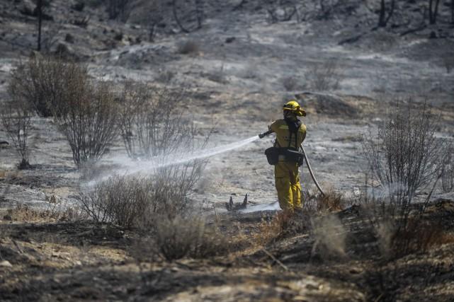Plus de 1200 pompiers ont été mobilisés pour... (Associated Press)