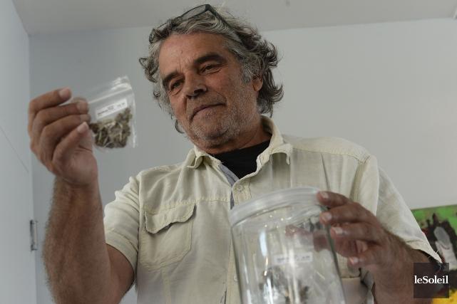 L'expansion prochaine de la boutique de cannabis médicinal,... (Photothèque Le Soleil, Patrice Laroche)