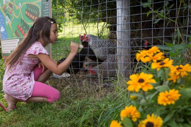 La Vieille Ferme propose aux enfants un parcours... (Photo Yannick Fleury, La Presse)