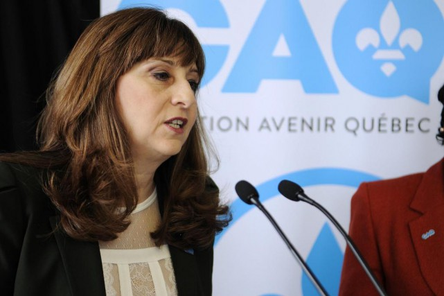 «La députée caquiste Nathalie Roy s'est lancée dans... (PHOTO ARCHIVES LA PRESSE)