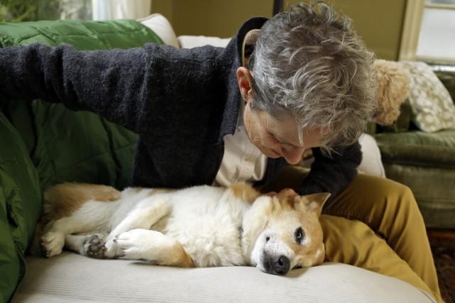 Les chiens comme les humains utilisent l'hémisphère gauche... (Photo AP)