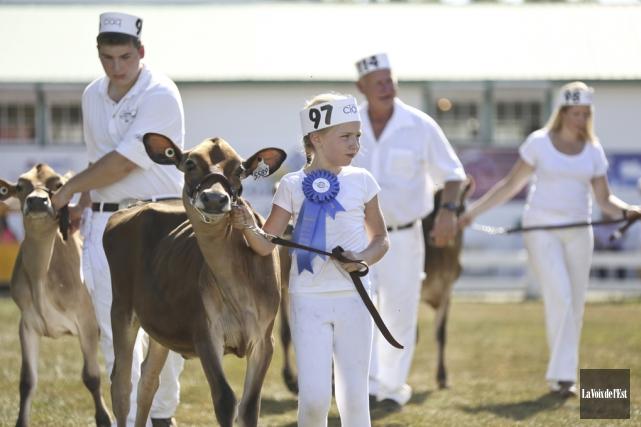 Les compétitions d'animaux s'élèvent d'un cran, cette année,... (Archives La Voix de l'Est, Julie Catudal)