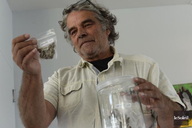 L'ex-propriétaire de Weeds, Michel Dumond,fait face à des... (Photothèque Le Soleil, Patrice Laroche)