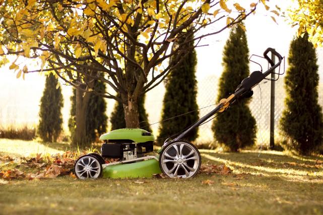 Utilisez la tondeuse pour déchiqueter les feuilles mortes... (123rf, Petr Konecny)