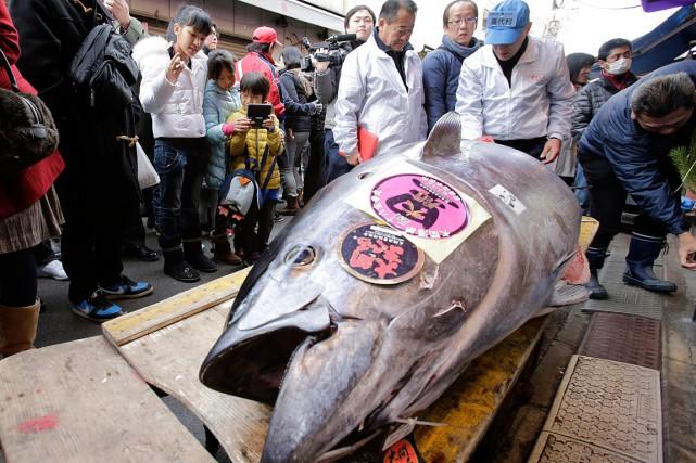 Un thon rouge vendu aux enchères du marché... (Photo Shizuo Kambayashi, archives AP)