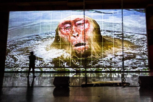 Projection de la vidéo Erysichthon, 2015, de Jon... (Photo Olivier PontBriand, La Presse)