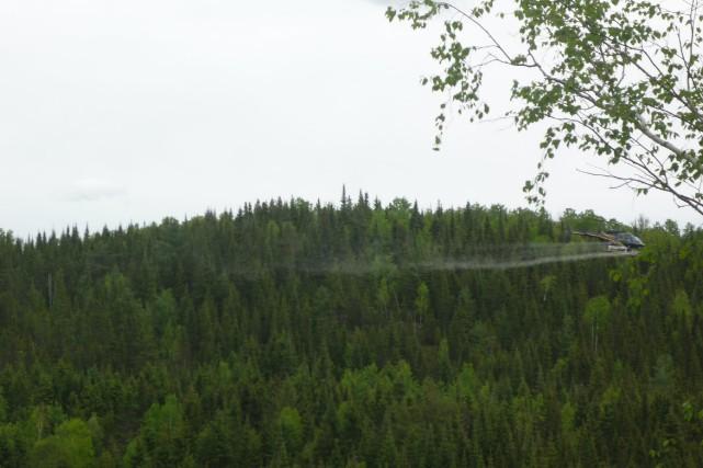 Un hélicoptère appartenant à une firme de Trois-Rivières... (Photo courtoisie)