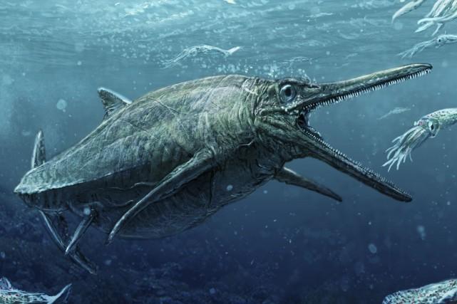 Le féroce prédateur, digne des pires monstres de... (AFP, Todd Marshall)