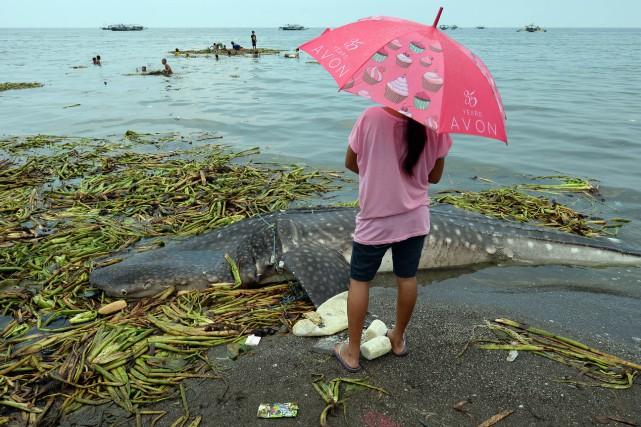 Le rapport affirme également détenir des preuves selon... (Photo AFP)