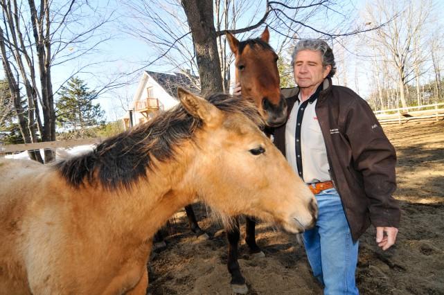 André Provonost avec ses chevaux dans sa cour... (A)