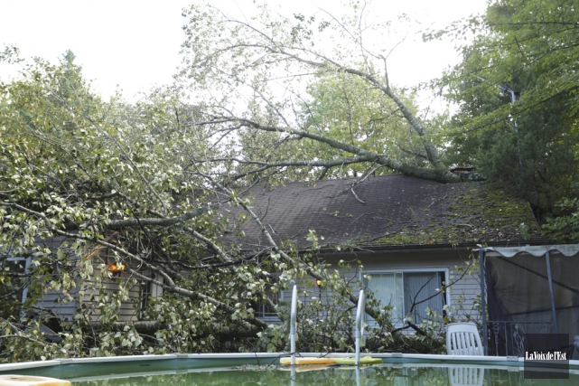 Deux arbres ont lourdement endommagé une maison de... (Catherine Trudeau, La Voix de l'Est)