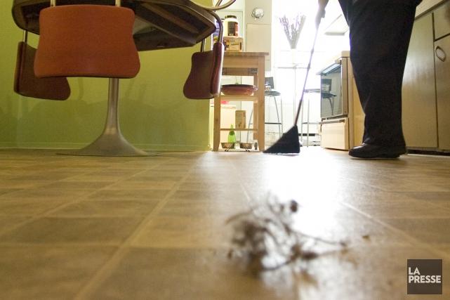 La poussière qui se trouve dans la plupart des habitations aux États-Unis... (Photothèque La Presse, Ivanoh Demers)