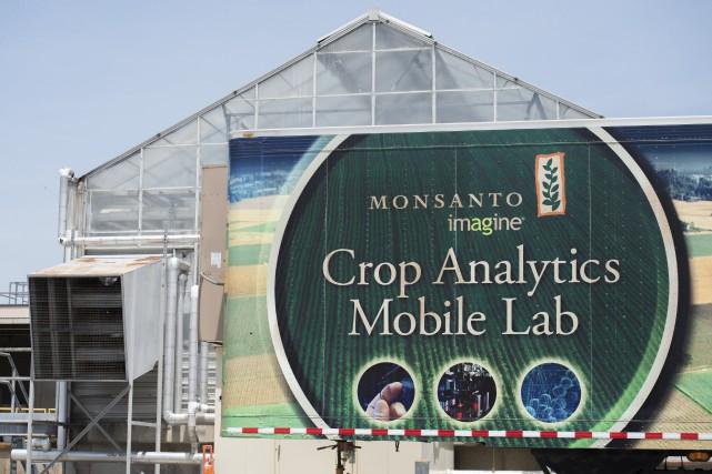 Monsanto est le roi des semences OGM de... (AFP, Michael B. Thomas)