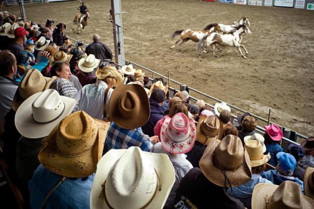 Après le Stampede de Calgary, le rodéo de... (PHOTO DAVID BOILY, archives LA PRESSE)