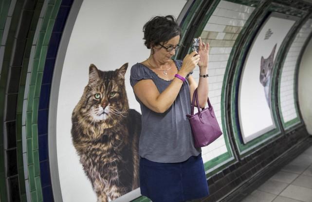 Une utilisatrice du métro prend un egoportrait avec... (AFP, Jack Taylor)