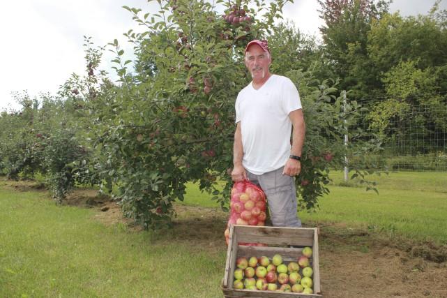 Dès samedi, les cueilleurs pourront cueillir des pommes... (Martin Brunette, LeDroit)