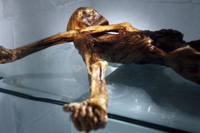 Le corps momifié d'Ötzi, «l'homme des glaces», est... (AFP, Andrea Solero)