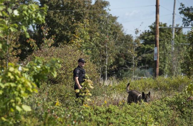 Un policier et son chien effectuent des recherche... (La Presse Canadienne, Darren Calabrese)