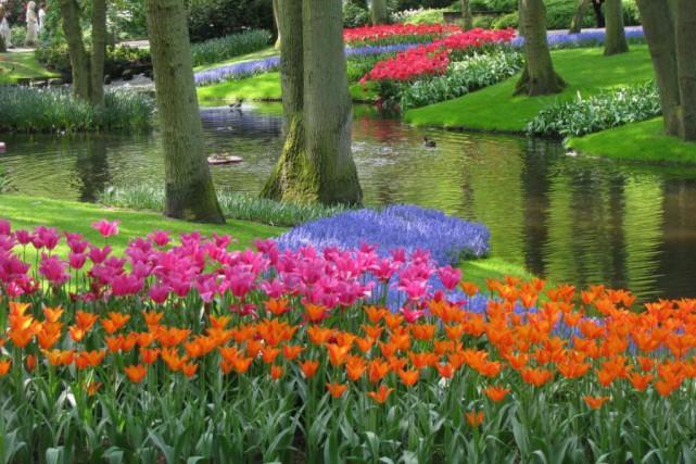 Le jardin Keukenof, dans les Pays-Bas, est réputé... (Photo Donar Reiskoffer, tirée de Wikimedia Commons)