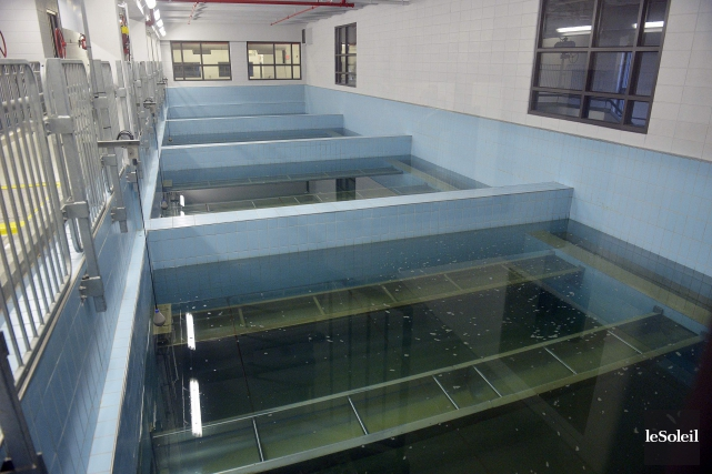 L'usine d'eau Desjardins, à Lévis... (Phototèque Le Soleil, Jean-Marie Villeneuve)