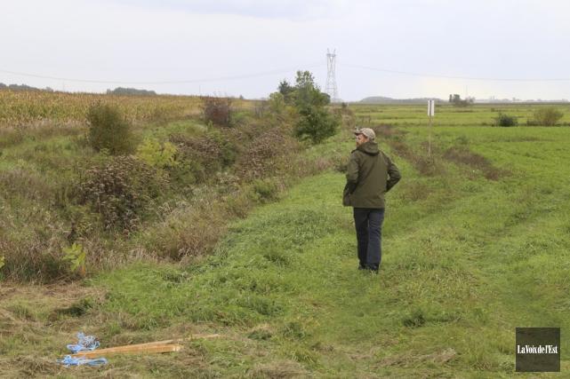 Près de 8000 végétaux indigènes ont été plantés... (Janick Marois, La Voix de l'Est)