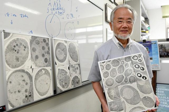 Yoshinori Ohsumi... (Photo Akiko Matsushita, Kyodo News via AP)