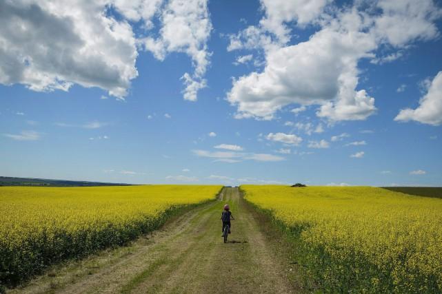 Le Canada s'est engagé à réduire ses émissions... (PHOTO ARCHIVES LA PRESSE CANADIENNE)