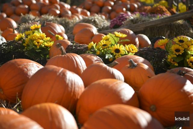 Le petit village de Ripon, dans la Petite-Nation, enfilera son habit d'automne... (Archives, Le Soleil)