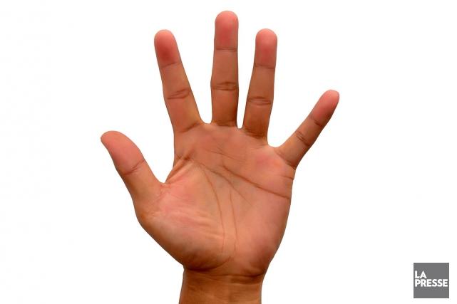 Pourquoi nos mains ont-elles cinq doigts, et non trois ou sept? Avouez que... (Photothèque La Presse)
