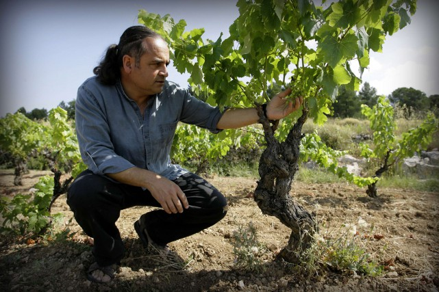 Le vigneron espagnol Josep Maria Albet i Noya... (PHOTO ARCHIVES AFP)