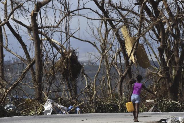 Haïti a commencé dimanche un deuil national de... (AFP)