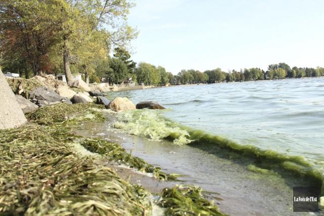 Les problèmes de cyanobactéries dans le lac Champlain... (Janick Marois, archives La Voix de l'Est)