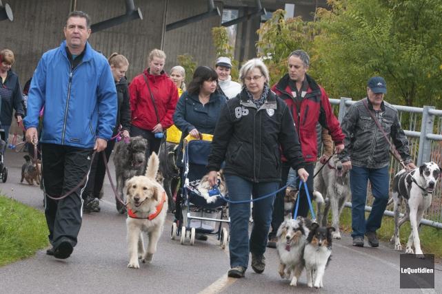 Petits et gros chiens, accompagnés de leur maître,... (Photo Le Quotidien, Michel Tremblay)
