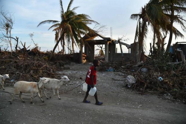 «En 2013, les entreprises haïtiennes n'ont reçu que... (PHOTO HECTOR RETAMAL, Agence France-Presse)