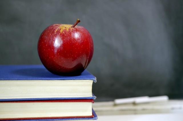 L'auteur déplore une certaine «privatisation» de l'école publique,... (123RF/Tim Wege)