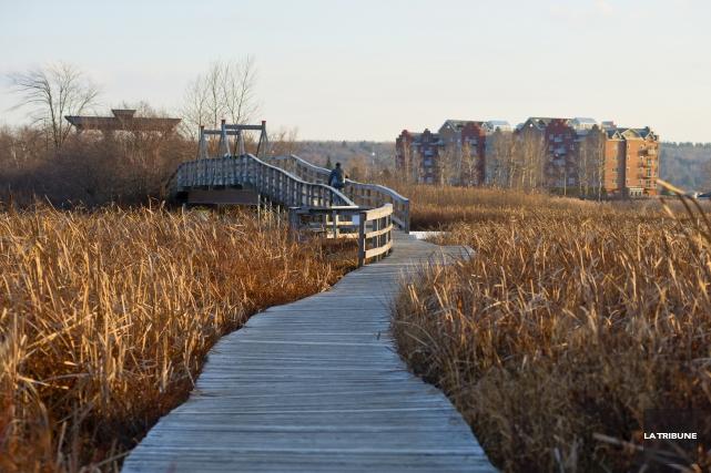 L'Association du marais de la Rivière-aux-Cerises (LAMRAC) recevra... (Archives, La Tribune)