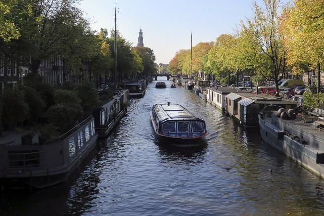 Les phoques communs atteignent parfois les canaux d'Amsterdam... (AP, Margriet Faber)