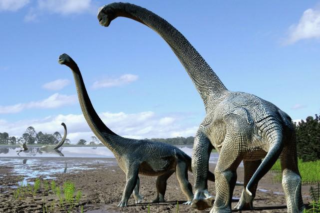 Baptisé Savannasaurus elliottorum, ce dinosaure au long cou... (PHOTO AFP)
