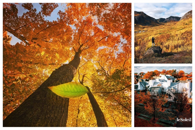 Depuis trois ans, chaque automne apporte au Projet clic son lot de photos... (Le Soleil)