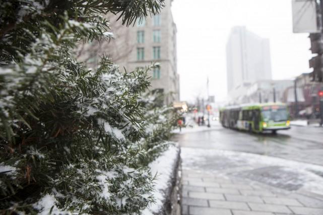 Première neige sur Québec.... (Le Soleil, Caroline Grégoire)
