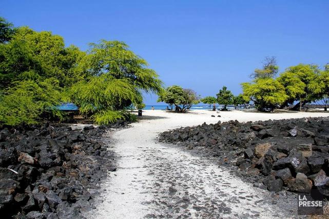Si chacune des îles de l'archipel d'Hawaii a... (Photo Audrey Ruel-Manseau, La Presse)