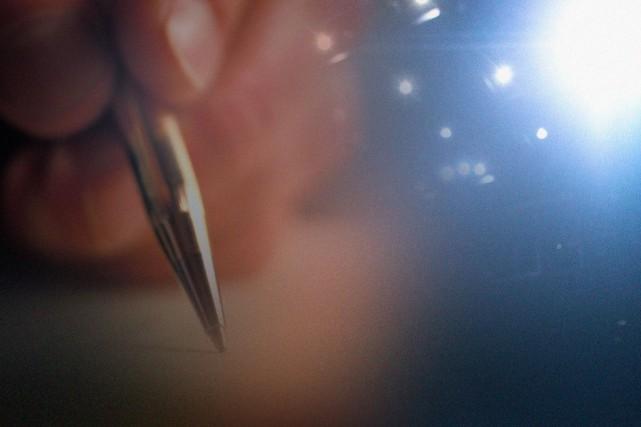 La saison des prix littéraires bat son plein. Voici les principaux rendez-vous... (Image La Presse)