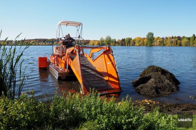 L'opération de faucardage sur le lac Boivin à... (Alain Dion, La Voix de l'Est)
