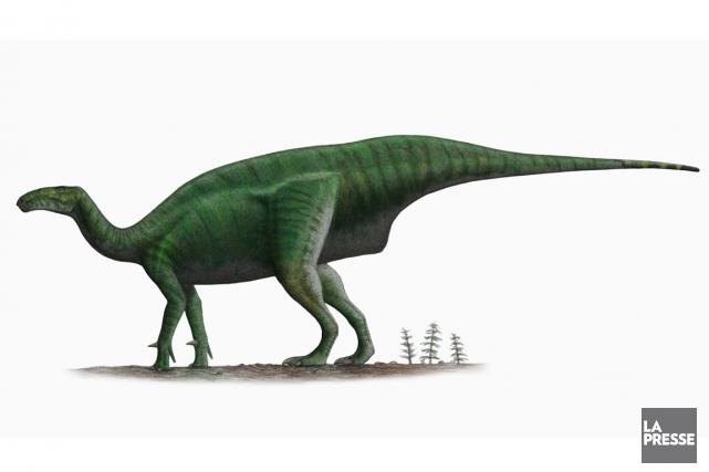 Le fossile découvert a appartenu à une espèce... (Illustration Wikimedia commons)