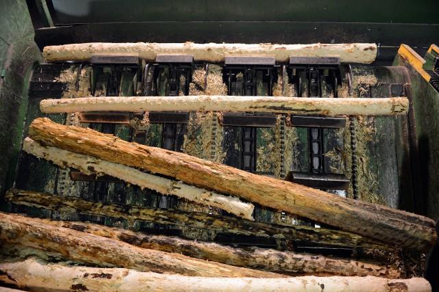 L'industrie forestière figure parmi les seuls secteurs économiques présents... (Archives)