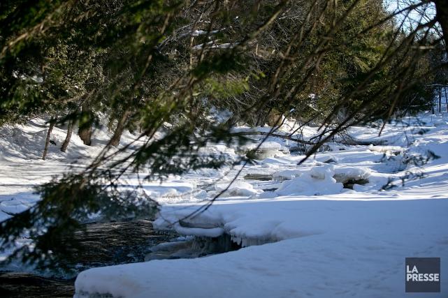Environnement Canada a émis un avertissement de neige... (PHOTO DAVID BOILY, ARCHIVES LA PRESSE)