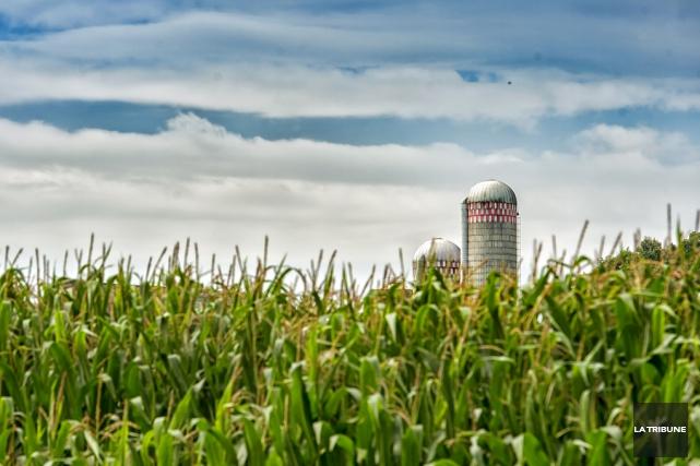 Le secteur agroalimentaire doit bénéficier, sans autres délais,... (archives La Tribune)