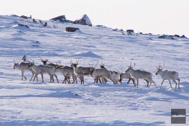 Environnement et Changement climatique Canada a publié ses... (Archives Le Quotidien)
